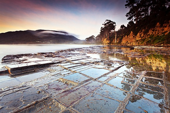 Tessellated Pavement - Tasmania